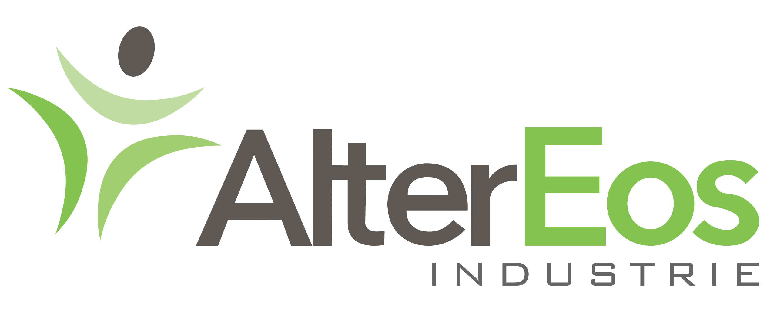 Offre 3: AlterEos Industrie